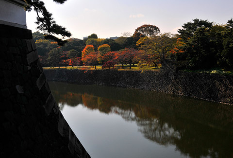 photo-201.jpg
