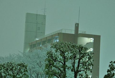 photo_288.jpg