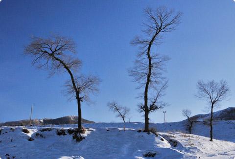 photo_898.jpg