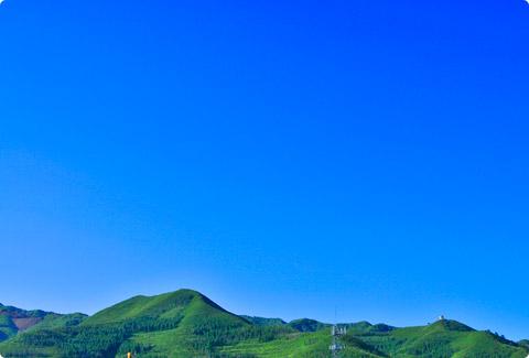 photo_981.jpg