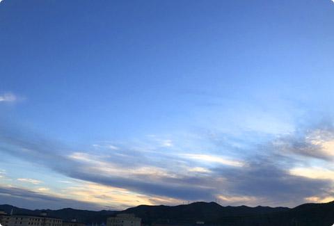 photo_1441.jpg