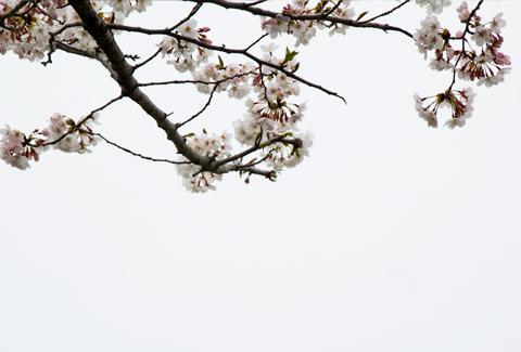 photo-71.jpg